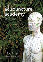 The Accupuncture Academy